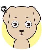 犬にトイレをしつける極意・トップイメージ